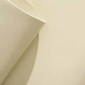 LENÇOL DE PVC CREME 1,40 x 10 M x 2,4 MM